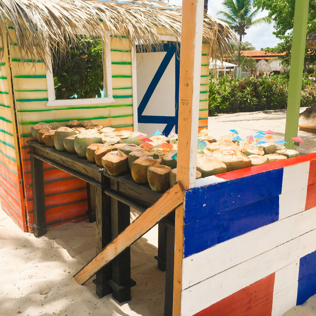 The New Traveler's Guide To The Dominican Republic