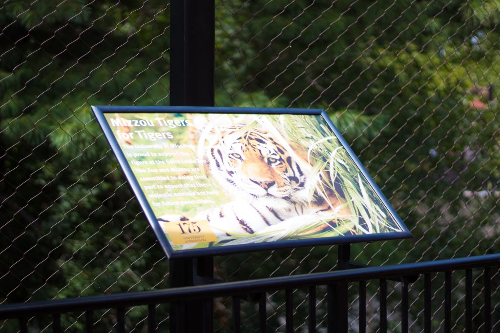 How To Get The Most Out Of The St. Louis Zoo