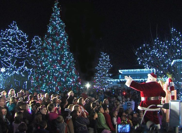 8 Activities To Do During The Holiday Season in St. Louis