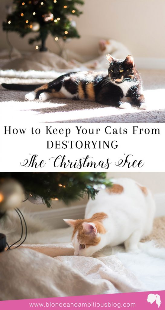 how to keep your cats away from your christmas tree - How To Keep Cat Away From Christmas Tree