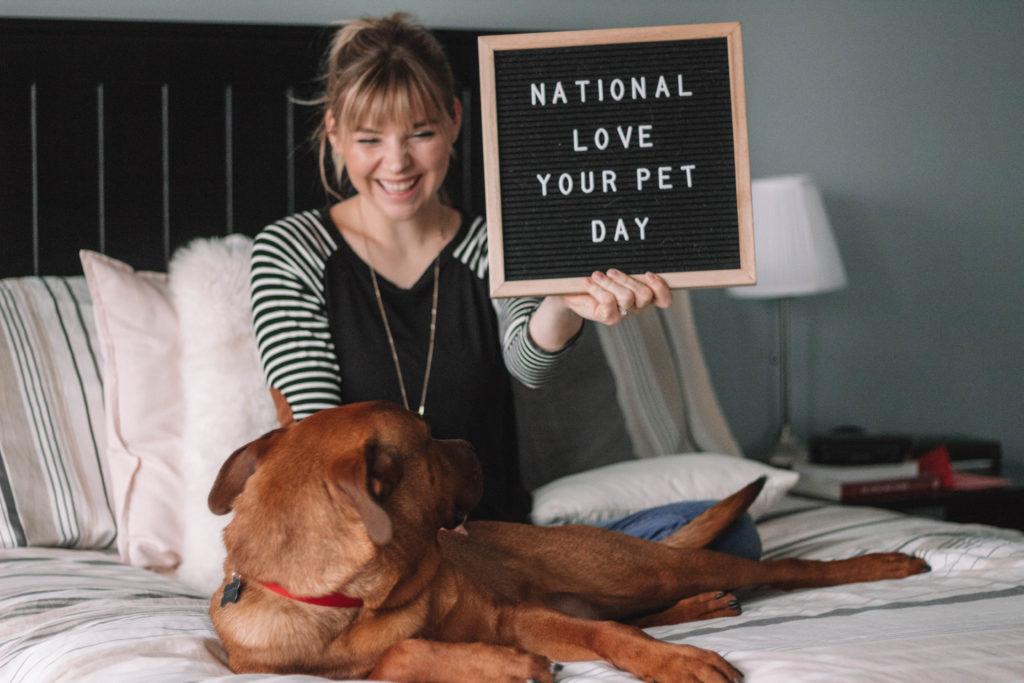 How To Show Your Pets LOVE on National Love Your Pet Day